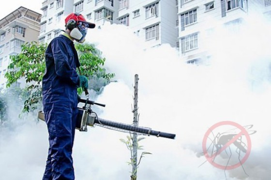 Clearlake Pest Control