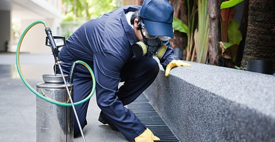Tallahassee Pest Control