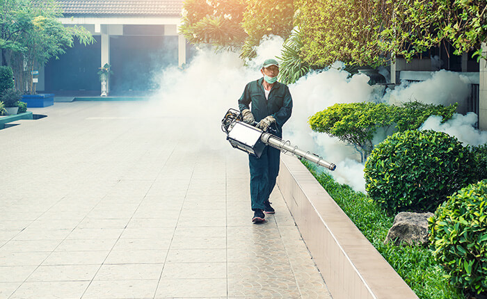 Pest Control in Manorville NY